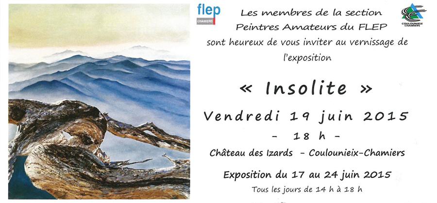 «Insolite» l'expo 2015 des peintres amateurs du Flep